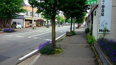 20150615車道と歩道の様子