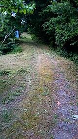 20150708ラベンダーの畑へと続く急な坂道の草刈り後の様子5
