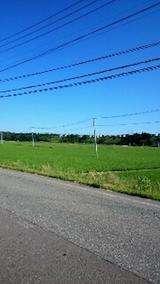 20150710山へ向かう途中の様子田んぼ