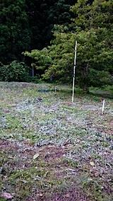 20150710野菜畑周囲の草刈り後の様子