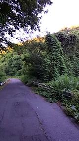 20150712山からの帰り道の様子峠道
