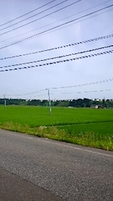 20150713山へ向かう途中の様子田んぼ