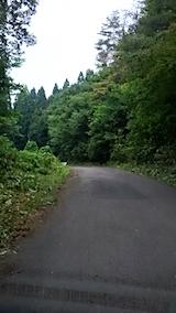 20150714山へ向かう途中の様子峠道
