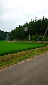 20150714山へ向かう途中の様子草刈り