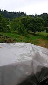 20150714山の様子雨が降り始める