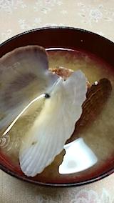 20150715ホタテ貝のみそ汁
