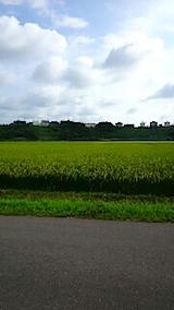 20150819山へ向かう途中の様子田んぼ2
