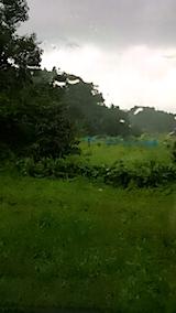 20150904山の様子雨が降り出す
