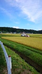 20150916秋田市で稲刈り始まる2