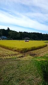 20150916秋田市で稲刈り始まる3
