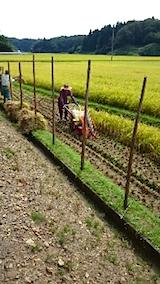 20150916秋田市で稲刈り始まる6