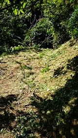 20150916栗畑の草刈り後の様子1