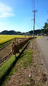 20150916山からの帰り道の様子稲刈りの後1