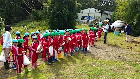 20151008幼稚園の栗拾い16