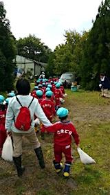 20151008幼稚園の栗拾い18