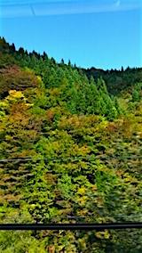 20151010秋田県と岩手県の県境紅葉3