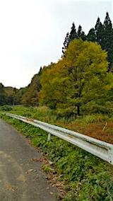 20151024山へ向かう途中の様子峠道