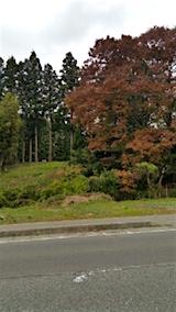 20151024山からの帰り道の様子紅葉2