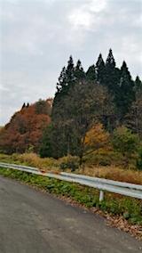 20151107山へ向かう途中の様子峠道2