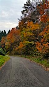 20151107山へ向かう途中の様子峠道3