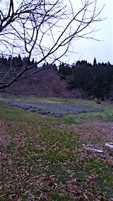 20151202ラベンダーの畑