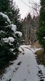 20160109山の様子