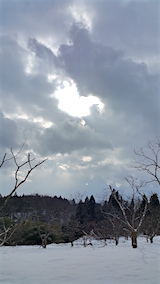 20160111栗畑にお日さまが1