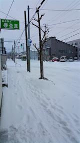 20160113外の様子雪寄せ前1