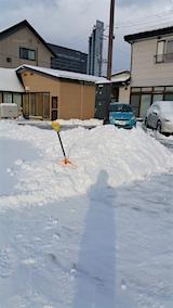 20160113外の様子雪寄せ中1
