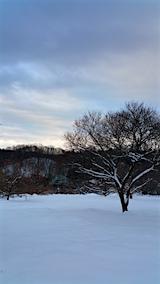20160113栗畑から望んだ山の様子2