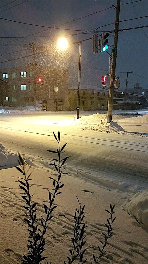 20160113外の様子夜のはじめ頃雪降り2
