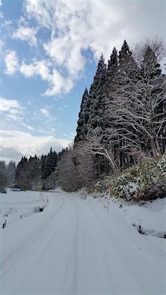 20160116山へ向かう途中の様子峠道1