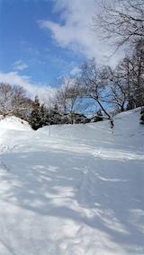 20160116ラベンダーの畑へと続く急な坂道の様子2