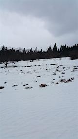 20160229ラベンダーの畑2
