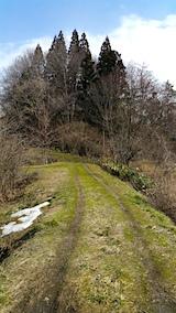 20160312ラベンダーの畑へと続く急な坂道の様子1