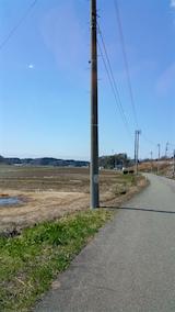 20160414山からの帰り道の様子田んぼ