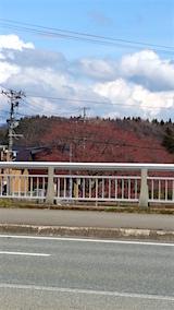 20160414山の帰り道の様子桜大橋より太平川沿いの桜