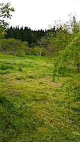 20160512ラベンダー畑周囲の草刈り後8