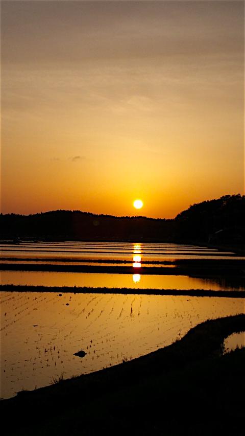 20160512山からの帰り道の様子夕焼け空2
