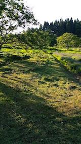20160610草刈り後5