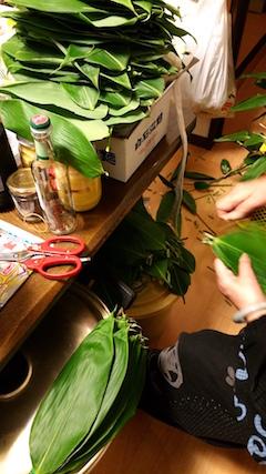 20160614笹の葉