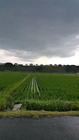 20160628山へ向かう途中の様子雨が降り出す2