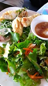 20160709お昼ご飯野菜サラダ