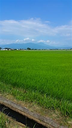 20160711会津坂下町より会津磐梯山を望む