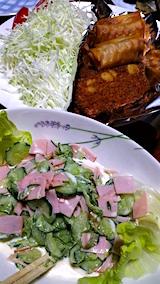 20160712晩ご飯野菜サラダ