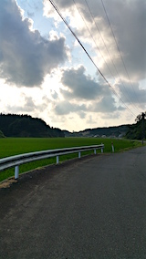 20160805山からの帰り道の様子田んぼ