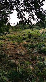 20160909草刈り後の様子1