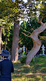 20160911白瀑神社前