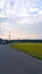 20160912山へ向かう途中の様子田んぼ1