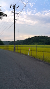 20160912山へ向かう途中の様子田んぼ2